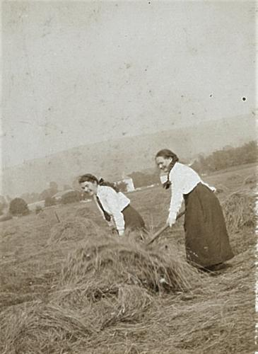 Two girls helping local farmers with haymaking LF310-70